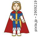 王子様 2909219
