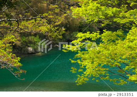 新緑の天竜川 2913351