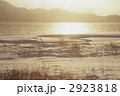 金色に輝く(田沢湖・雪) 2923818