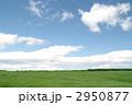 草原 2950877