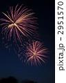 打ち上げ花火 花火大会 花火の写真 2951570