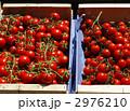 ミニトマト 野菜 トマトの写真 2976210