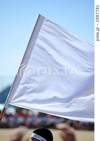 白組応援の応援旗のアップ 2987781