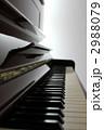 ピアノ 2988079