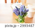 ムスカリ-02■花・ブドウヒアシンス・アイビー・マグカップ・ティーポット 2993487