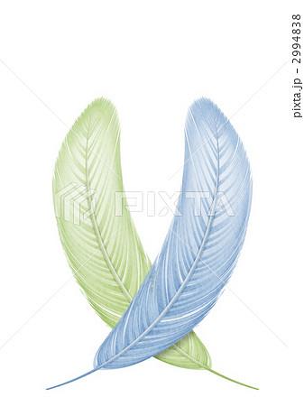 鳥の羽根のイラストのイラスト素材 2994838 Pixta