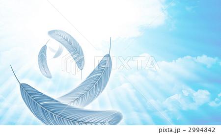 鳥の羽 フェザー 羽毛のイラスト素材 2994842 Pixta