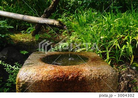 7月 茶庭・つくばい・手水鉢18茶庭 3004302