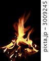 キャンプファイアー 焚き火 火の写真 3009245
