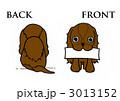 キャバリア~front and back~ 3013152