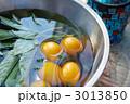 野菜生活 3013850