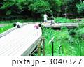 夏 ザリガニ釣り 森林公園 3040327