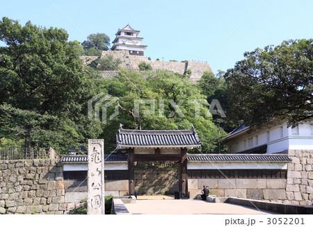 香川県丸亀市亀山公園「丸亀城」 3052201