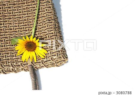 鞄 網目 持ち手の写真素材 [3080788] - PIXTA