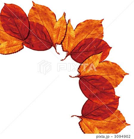 枯れ葉 葉 落ち葉のイラスト素材 3094902 Pixta
