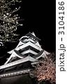 熊本城と夜桜、縦構図 3104186