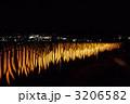 夜の大根ラインダンス 3206582
