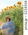 Princess MAIKO Benicio/向日葵畑/向日葵/明るい健康イメージ 3238306