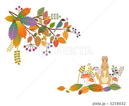 カード カード ダウンロード : 秋のイラスト素材 [3258032] - PIXTA