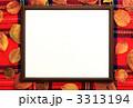 フレーム 額縁 枠の写真 3313194