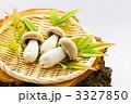 高級品 食用キノコ 本しめじの写真 3327850