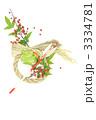 注連縄 辰 しめ飾りの写真 3334781