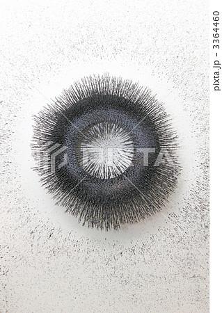 ドーナツ型磁石の磁力線 3364460