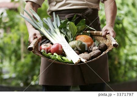 農業イメージ