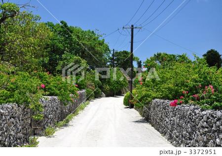 竹富島 珊瑚の道と木の電柱 3372951