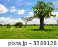 田舎 田舎の アウトドアの写真 3389128