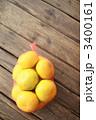 早生みかん ネットミカン ネットみかんの写真 3400161
