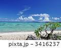 青い海 コバルトブルー エメラルドルリーンの写真 3416237