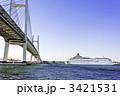 豪華客船 船旅 横浜港の写真 3421531