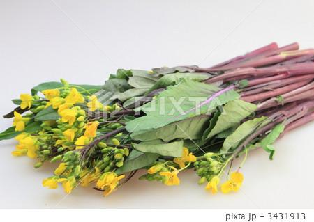 紅菜苔 3431913