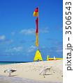 珊瑚礁の海岸~青い空とカモメとビーチフラッグ 3506543