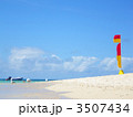 珊瑚礁の海岸~青い空とカモメとビーチフラッグ 3507434