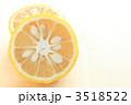 ゆず 柚子 ユズの写真 3518522