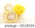 柑橘類 ゆず 柚子の写真 3518539