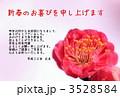 梅(写真)定型文入り 3528584