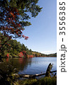秋の白駒池 3556385