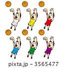 ミニバス 球技 バスケのイラスト 3565477