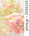 フラワーアレンジメント 生花 ブーケの写真 3594103