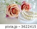 薔薇とパール 3622415