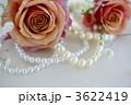 薔薇とパール 3622419