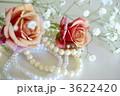 薔薇とパール 3622420