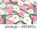 松竹梅 3639021