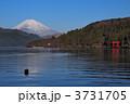 平和の鳥居と富士山 3731705