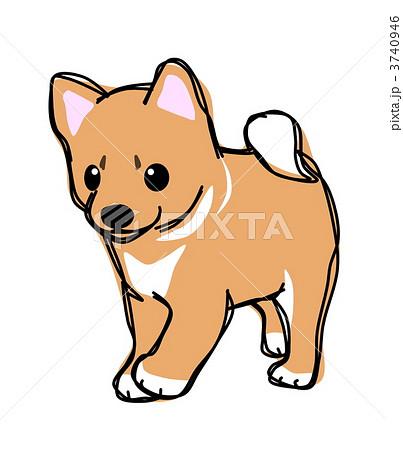 犬 柴犬 イラストのイラスト素材 3740946 Pixta