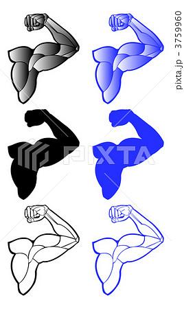 腕筋肉上腕三頭筋のイラスト素材 3759960 Pixta