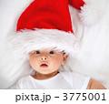 かわいらしい 可愛らしい xマスの写真 3775001